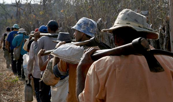 Bancada ruralista mantém vocação escravocrata: 11 deputados somam 286 violações trabalhistas