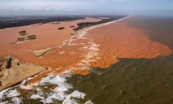 Lama da mineradora Samarco chega ao mar destruindo natureza local