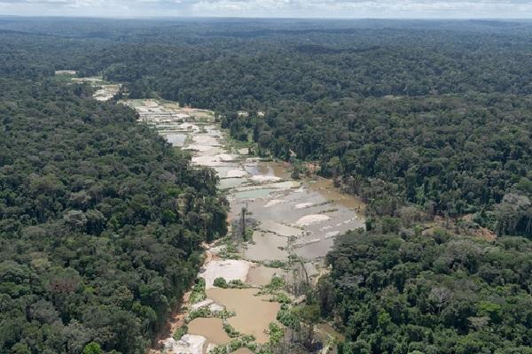Em meio à pandemia, 72% do desmatamento na Amazônia estão em Terras Indígenas e UCs federais
